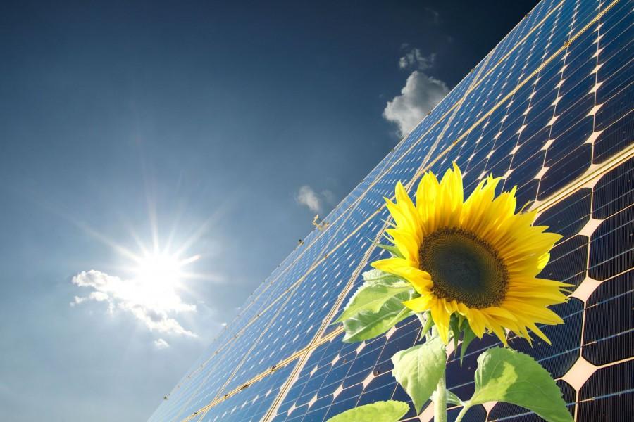 Nieuwe eis voor EPC, Zonnepanelen, energie, milieu
